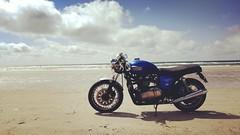 beach fun II (=RetroTwin=) Tags: triumph thruxton retrotwin lostillusion75 2017 motorcycle motorrad motorbike denmark dänemark danmark twin classic vintage retro beach strand british 900 cafe racer