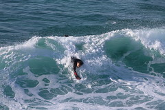 2018.03.18.08.31.06-Tobias-005 (www.davidmolloyphotography.com) Tags: bodysurf bodysurfer bodysurfing surf beach surfing surfer tamarama