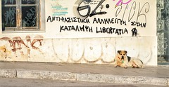 Athens (1305) (Polis Poliviou) Tags: greece athens hellas athens2018 streetphotos streetphotography love athensgreece urbanphotography people walking winter life ©polispoliviou2018 polispoliviou polis poliviou πολυσ πολυβιου mediterranean openmuseum orthodox environment athensdestination hospitality peaceful visitor athenscity athenstown athensphoto athensphotos attiki acropolis citystreets αθήνα attica hellenicrepublic hellenic capitalcity athenscenter greek urban heritage travel destinations ancient attraction vacation touristic european amazing historicalplace ancientgreece sightseeing cityscape civilization locations place culture art scenic holiday city beauty beautiful style places architectural architecture earth antique ruin ruins