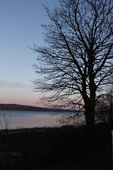 Rosneath 2018 (anna n rob) Tags: rosneath scotland uk britain water sea caravan trees sunset boats walks sky clouds argyll bute scottish village holiday western shores peninsula firthofclyde nature caravanpark lochside views