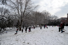 BilbaoNevado2018_0145 (otxolua (Josu Garro)) Tags: bilbao nevada nieve 2018 febrero nevado