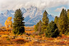 Mountain Scenic (Gary O'Dell (sagebrushphotography)) Tags: tetons fall autumn fence color mountains nationalpark jacksonhole railfence woodenfence trees pines grass autumngrass tetonnationalnationalpark
