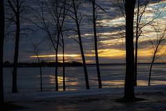 Snow melt on Ottawa River (beyondhue) Tags: dusk sunset evening winter ottawa river snow ice reflectin beyondhue tree riverbank shore gatineau quebec ontario canada sky sun cloud