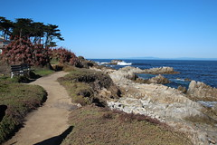 IMG_7627 (mudsharkalex) Tags: california pacificgrove pacificgroveca