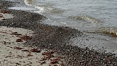 Ostsee Naturstrand (dl1ydn) Tags: dl1ydn ostsee mecklenburgvorpommern strand naturstrand wasser sand zeiss planar f28100mm nature natur meer water homemade manuell mf