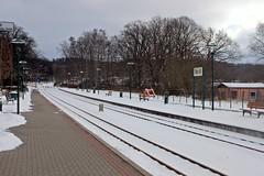 Der Kleinbahnhof in Binz (lt_paris) Tags: urlaubinbinz2018 binz rügen rasenderroland schmalspurbahn kleinbahnhof bahnhof schnee winter eisenbahn gleise