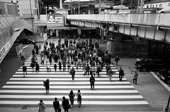 Crossing at Osaka Station (Eric Flexyourhead) Tags: umeda 梅田 kitaku 北区 osaka osakashi 大阪市 kansai 関西地方 japan 日本 osakastation jrosakastation osakaeki 大阪駅 city urban crossing street streetscape cityscape japanese people man woman walking pedestrians monochrome blackwhite bw ricohgr