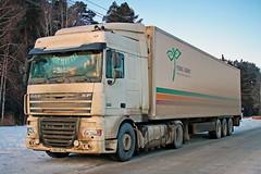 DAF FT XF105.460  С 486 НВ 33 (RUS) (zauralec) Tags: екатеринбург город улица автомобиль грузовик ekaterinburg krasnolesyastreet daf ft xf105460 с 486 нв 33 rus