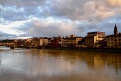 Lungarno Guicciardini (Marco Bartolini) Tags: tuscany toscana golden river fiume florence firenze arno