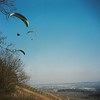 Einflugschneise (alf sigaro) Tags: gleitschirmfliegen paragliding gleitschirme badenwürttemberg isingpuckyi ising puckyi pucky eugenising eugenisingbergneustadt 6x6 weinberge vineyards