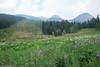 20170903-DSC_0110.jpg (bengartenstein) Tags: canada banff glacier nps glaciernps montana canada150 mountains moraine morainelake manyglacier lakelouise hiking fairmont