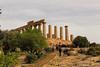 Tempio di Giunone Agrigento (vasapolliluca) Tags: agrigento sicilia italia it sicily templi tempio temples italy rovine mandorlo mandorle fiori almond tree