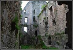 Castillo Barrière (Perigueux, Francia, 1-5-2009) (Juanje Orío) Tags: francia perigueux 2009 castillo castle ruina france