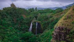 Hawaii USA - Kauai Island. Wailua Falls (Feridun F. Alkaya) Tags: usa hawaiiislands hawaii kauaiisland wailuafalls kauaisspirit forest waimeacanyonstatepark waimea waimeacanyon hawaiiisland ngc landscape canyon road kauaı grass soil aloha