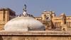 Indien (krieger_horst) Tags: jaipur amberfort indien