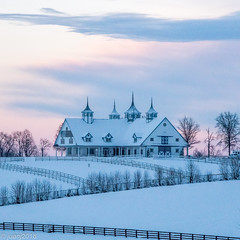 Snow in March - Kentucky (JuanJ) Tags: nikon d850 lightroom art bokeh nature lens light landscape white green red black pink sky people portrait location architecture building city iphone iphoneography square squareformat instagramapp shot awesome supershot beauty cute new flickr amazing photo photograph fav favorite favs picture me explore interestingness wedding party family travel friend friends vacation beach snow barn fence tree tamron