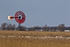 ein Klecks Farbe im Winter (Kay unterwegs) Tags: felder windmühle landschaft windmühlen