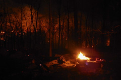 DSCN4226 (David J. Thomas) Tags: mirrorlake blanchardspringsrecreationarea fiftysix mountainview arkansas forestfire proscribedburn flames