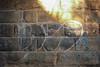 Ideo (NJphotograffer) Tags: graffiti graff new jersey nj trackside rail railroad bridge rip ideo