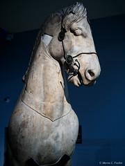 P3100148.jpg (marius.vochin) Tags: ancient statue london britishmuseum museum indoor england unitedkingdom gb