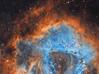 Rosette Nebula - Jan-Feb2018-L (Anna (www.eprisephoto.com)) Tags: rosettenebula ngc2239 orioneon80ed atik314l starstalkerobservatory astrophotography astronomy astrometrydotnet:id=nova2489460 astrometrydotnet:status=solved