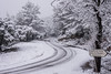 Slippery (Tiomax80) Tags: slippery road street sign tracks snow white snowing snowy monochrome taradeau taradelle flayosc var varois france french paca provence unusual trees d43 taradel panorama winter coat nikon d610 tropicalisé nikkor tiomax tiomax80 nieve neige neigeux 83 tourtaradel