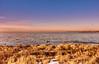 View out to the lake (flowerikka) Tags: abendstimmung atmosphäre bluesky blue chiemsee gräser grass lake lakeshore landschaft light magicallight pastell sky sun ufer view water winter wintersun