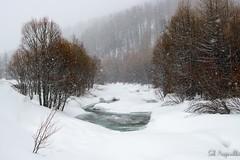 Rivière gelée, Queyras, France (sebastien.mespoulhe) Tags: queyras froid gel