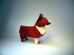 Corgi - Steven Casey (Rui.Roda) Tags: origami papiroflexia papierfalten dog chien perro cão cachorro corgi steven casey