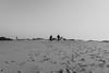 Walking on the sand (stefanfortuin) Tags: nature black white duinen sand zand netherlands appelscha dutch nederland friesland drenthe buiten outside lente spring warm sun foot step classic