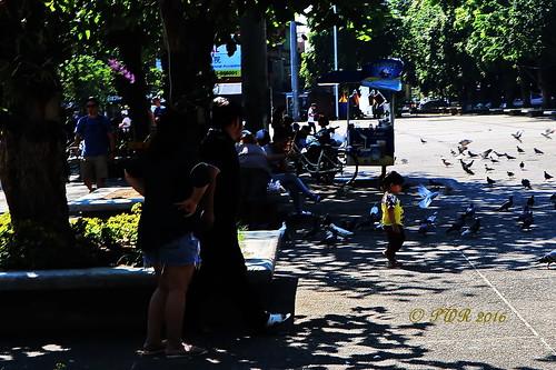 Chiang Mai Walkabout.
