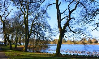 Carlingwark Loch Dumfries & Galloway
