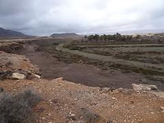 Barranco de la Torre bei Rosa del Vicario, NGID535430549 (naturgucker.de) Tags: ngid535430549 naturguckerde 1038097865 1062798284 938872571 chorstschlüter