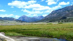 Yellowstone National Park (Suzanham) Tags: wyoming grass field mountain sky stream road yellowstonenationalpark landscape nature tetons