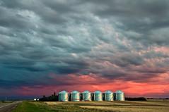 1206_1689 Granaries (wild prairie man) Tags: landscape granaries metal grain storage bins stormy sky prairiesky sunset afterglow wild prairie shaunavon saskatchewan canada copyrighted jamesrpage