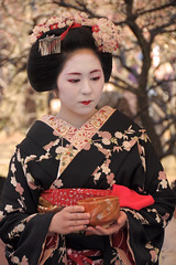 Plum blossom Kyoto (小川 Ogawasan) Tags: japan japon festival matsuri maiko tradition kimono kyoto kitano tenmangu 北野天満宮 梅花祭 京都 舞子
