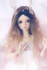 Unknown (Mikiyochii) Tags: doll bjd balljointeddoll mnf minifee lucywen fairyland