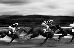 Horse race with motion as the riders and horses go by camera (Jim Corwin's PhotoStream) Tags: motion panning blurred abstract horserace together bunchedtogether horizontal photography horsesracing neckandneck excitement closetofinishline blurredmotion competition racehorse racehorses sport sporting speed challenge outdoors running sportstrack track finishline horseracingtrack animalthemes competitivesport determination gambling jockey onthemove men professionalsport rivalry thoroughbredhorses