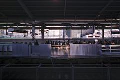 Spotlight (OzGFK) Tags: 35mm asia fuji400hpro japan nagoya nikkor nikon analog city film travel urban trainstation train transport publictransport people winter evening streetphotography trainplatform