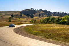 2017 Mountain States - Wind Cave National Park / Custer State Park, SD (dconvertini) Tags: windcave park custer state southdakota usa national