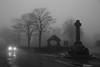 (Cheese_And_Wine) Tags: cheeseandwine blackandwhite 2470mm halifax fog trees headlights