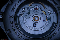 Victorinox 25 J (mestremur) Tags: watch reloj swiss suizo automatico automatic pulso dial victorinox jewels rubis minutes hours procust macro soy sony 90mm oss lens camera a7rii