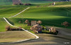 Marche countryside (Luigi Alesi) Tags: 201803marzo marche italia italy macerata campagna country countryside paesaggio landscape sceneri luce light verde green vecchio casolare old house agricoltura farm stra way road nikon d7100 raw tamron sp 70300