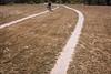 Querétaro -0904171103 (Jacobo Zanella) Tags: queretaro mexico 2018 sendero camino senda path line hidden mysterious rural land rough jacobozanella jz76