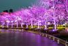 Another Angle (Ballet Lausanne) Tags: tokyo roppongi night d800 tokyomidtown 東京ミッドタウン