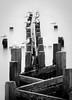 Seaside Perch (DS Williams) Tags: norfolk groyne walcott