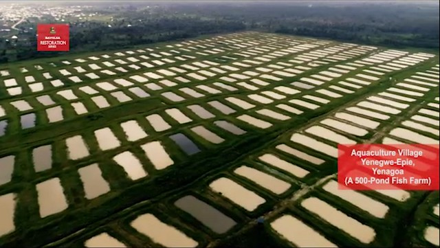 The Bayelsa Agriculture Industry