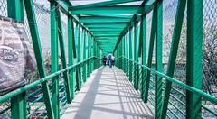 2018 - Mexico City - Tepotzotlan - Highway 57D Crosswalk