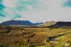 IRELAND (Jonas Witdoek) Tags: ireland galway wicklow mountains nature parks