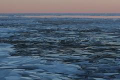 Shattered Sea (Elizabeth Glass) Tags: ice greatlakes winter olympus em5ii